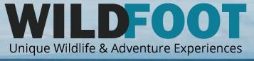 WildFoot Travels Logo.jpg