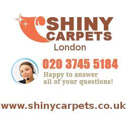 Shiny Carpets.jpg