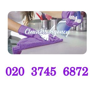 Cleaners Agency London Logo.jpg