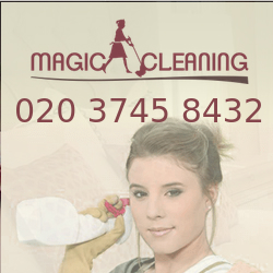 Magic Cleaning Services Logo.jpg