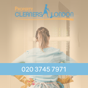 Property Cleaners London Logo.png