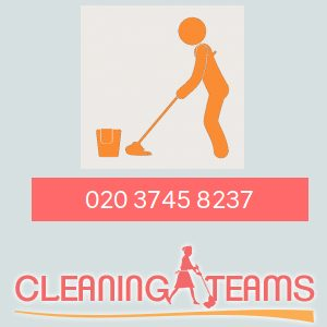 Cleaning Teams Logo.jpg