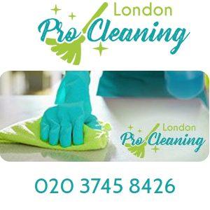 London Pro Cleaning Logo.jpg