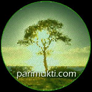 Parimukti-logo 2.png