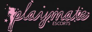 logo playmate.JPG