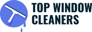 top-window-cleaner.png