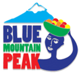 logo-blue mountain peak.jpg