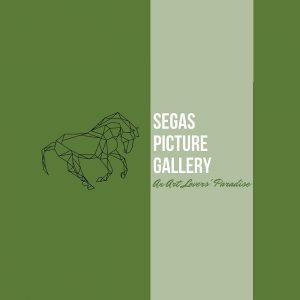 Segas-Picture-Gallery-0.jpg