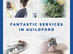 Fantastic Services in Guildford.png