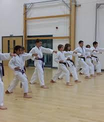 York Karate Dojo.jpg