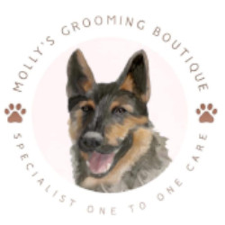 dog grooming stourport.jpg