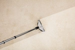 carpet-and-rug-cleaning-service-1024x682.jpg